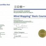 mindmappingbasiccourseedit1